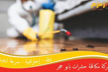 شركة مكافحة الحشرات بضمد