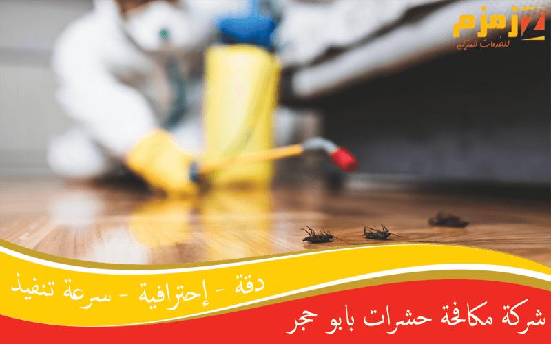 شركة مكافحة حشرات بابو حجر